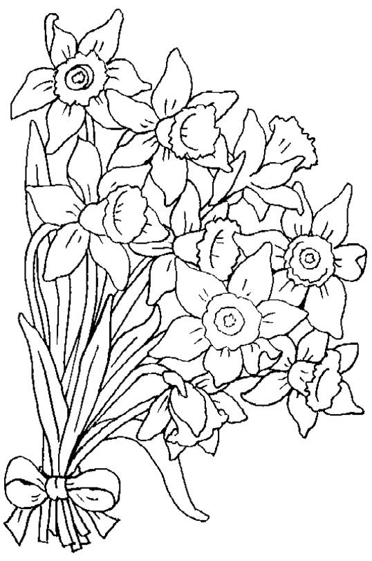 Planse De Colorat Cu Flori
