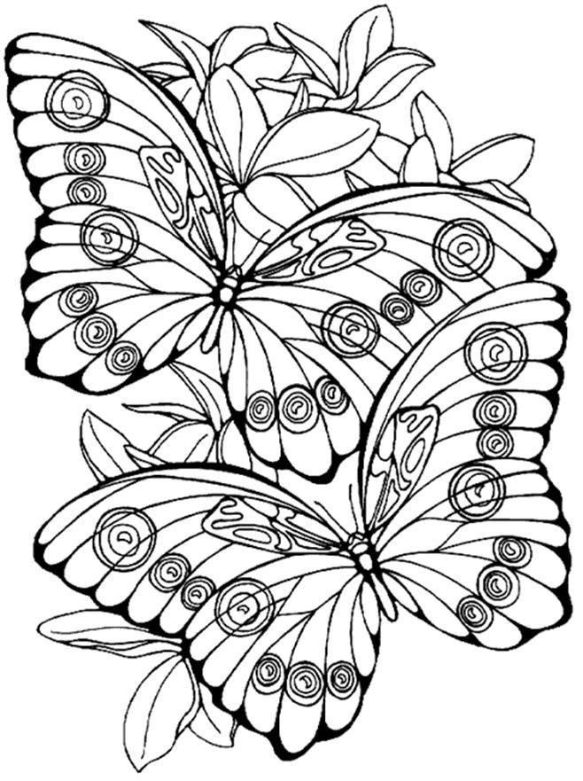 planse de colorat cu fluturi si flori