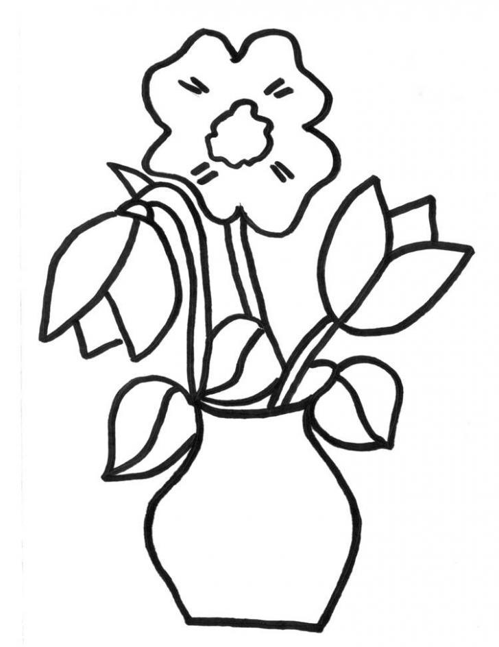 Desene Cu Flori De Primavara In Creion Losos